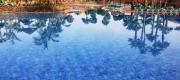 Oasis Dunas